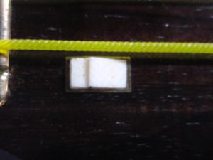 Dsc02311